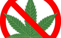 cannabis-1254745_960_720